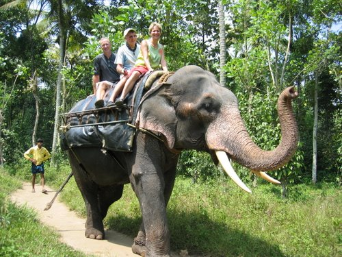 From the India (Kerala tour).  Adrienne in front, Graeme in the middle and me on the back....sort of a Graeme sandwich!  :-)
